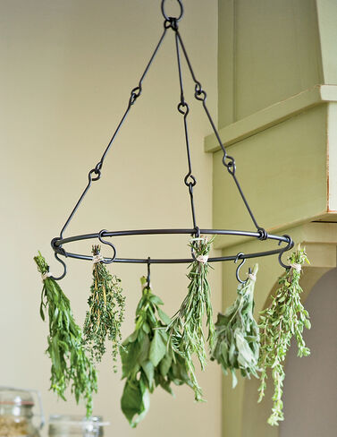 Herb Drying Rack Herbs, Herb Seeds, Herb Seed, Herb Plants, Herb Garden, Garden Seeds, Vegetable Garden, Seeds