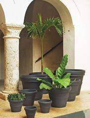 Brunello Planters