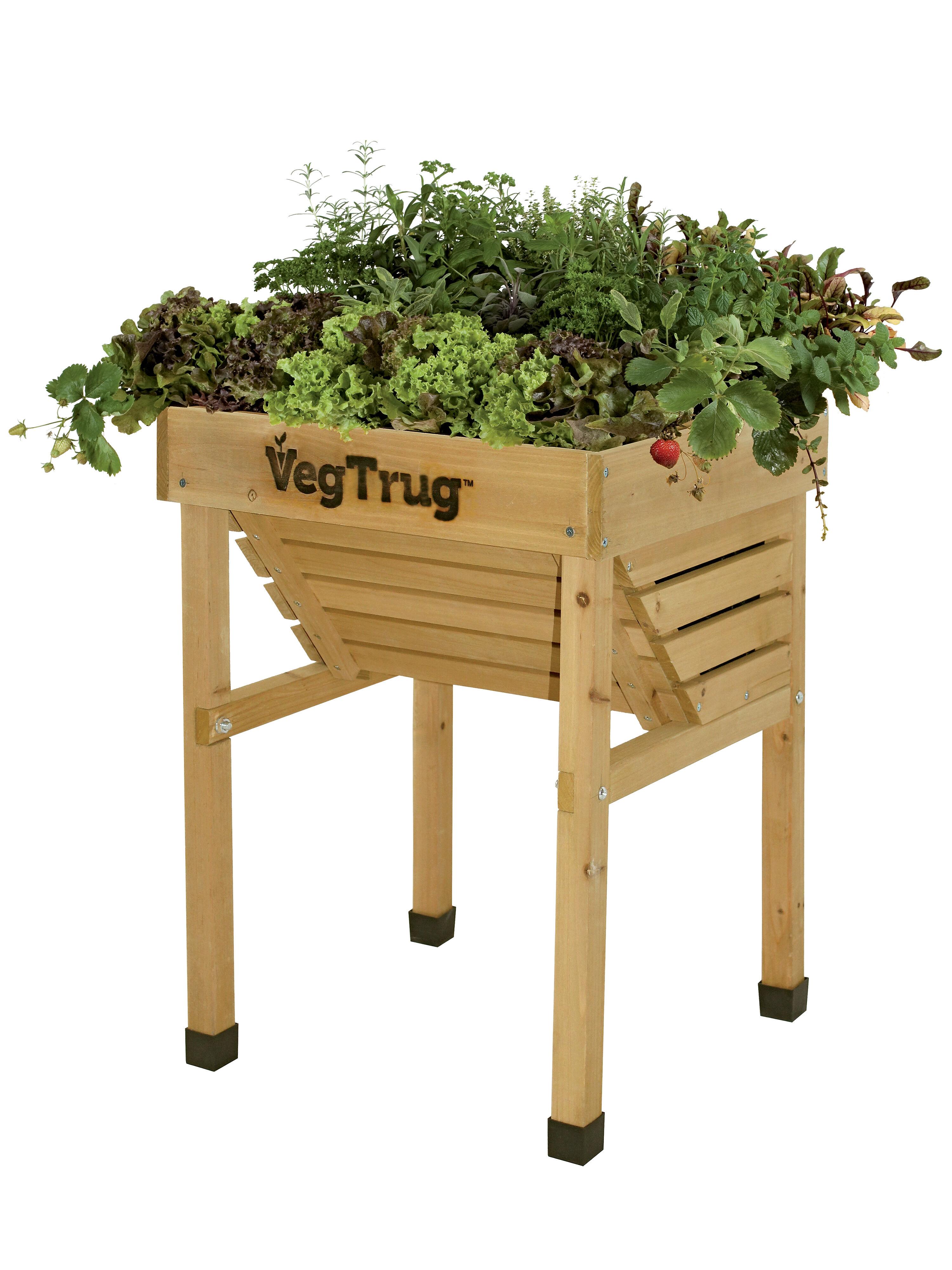 Compact Vegtrug Patio Garden With Covers Gardeners Com