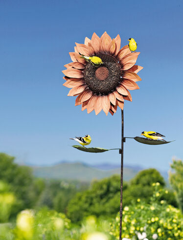 Sunflower Birdfeeder