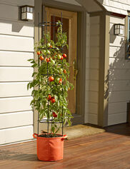 Gardener's Best® Tomato Grow Bag Kit