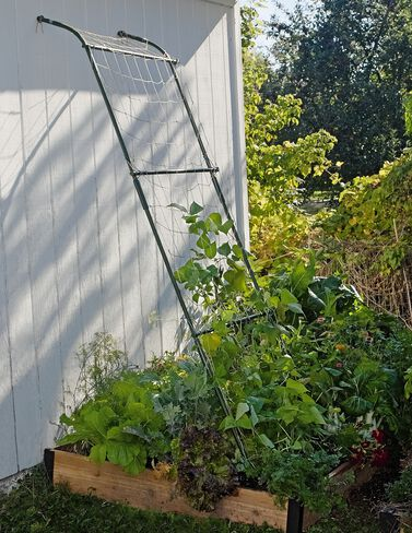 Lean-To Trellis plant supports, garden trellis, garden supplies, organic garden supplies, vegetable garden supplies