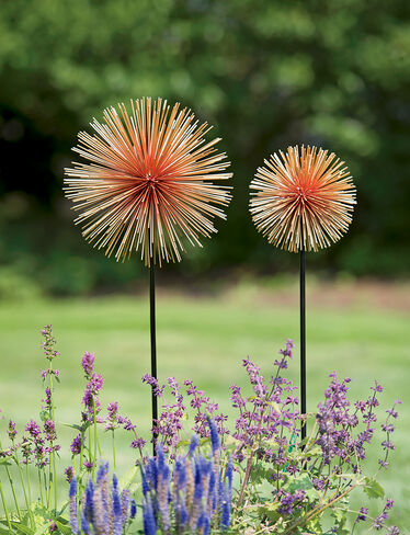 Allium Sunburst Stakes, Set of 2