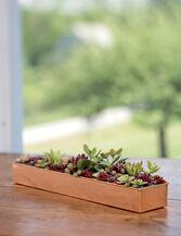 "Rectangular Copper Plant Tray, 18""x4"""