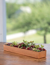 "Rectangular Copper Plant Tray, 18""x4"""