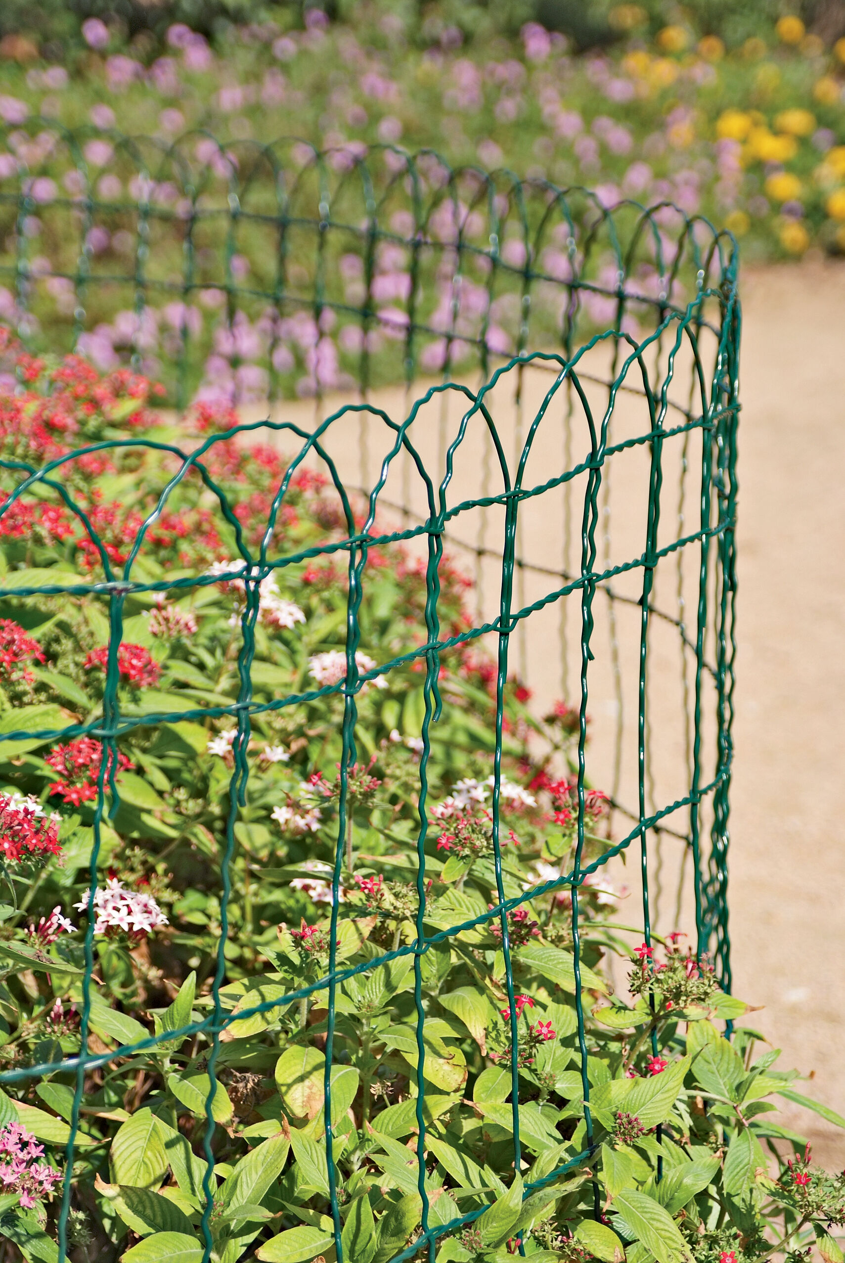 Captivating Decorative Wire Border Fence In 4 Heights Gardenerscom