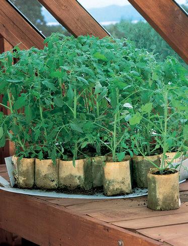 Gardener's Revolution™ Planter