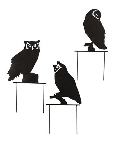 Lawn Owls, Set of 3