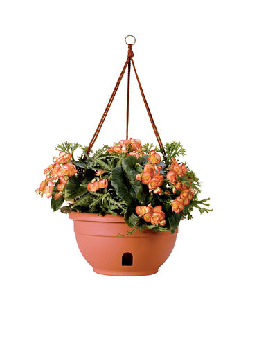 Hanging Baskets For Plants And Flowers Self Watering
