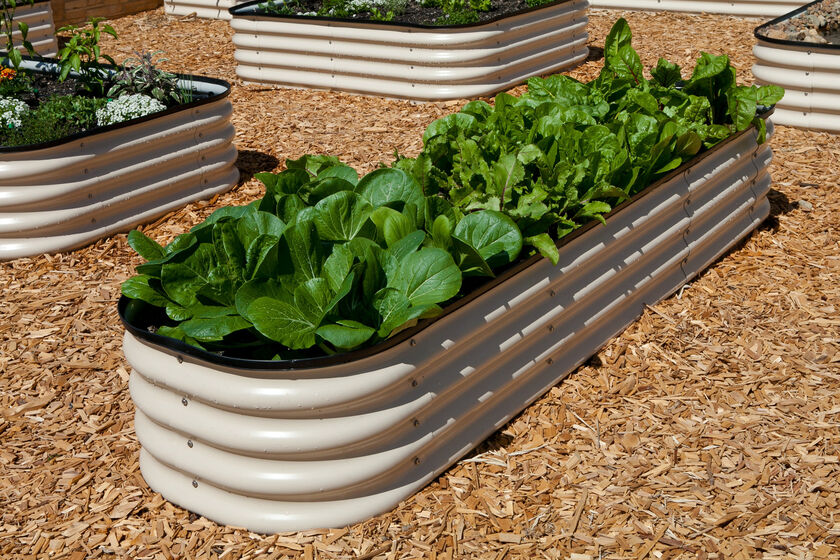 Metal Water Trough For Raised Garden Bed