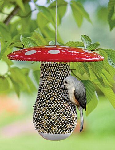 Mushroom Birdfeeder