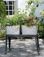 Wash Tub Elevated Garden