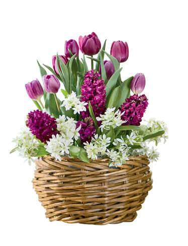 Spring Majesty Bulb Basket