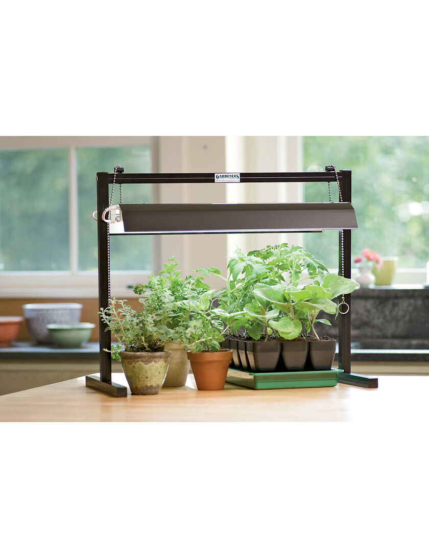 Grow light for houseplants - Compact Tabletop Garden Starter 174 Grow Light Kit