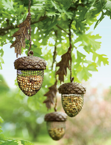 Acorn Birdfeeders, Set of 3