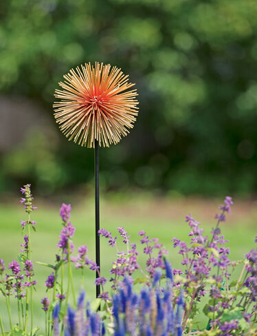 Allium Sunburst Stake, Medium