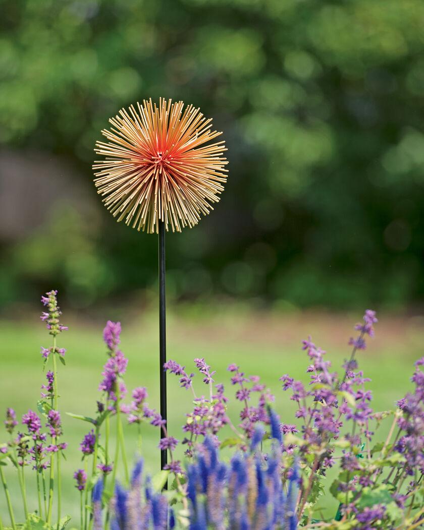 Decorative Flower Drawings: Medium Allium Sunburst Stake