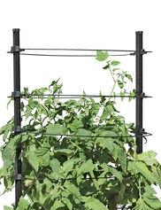 Gardener's Revolution® Classic Tomato Extension