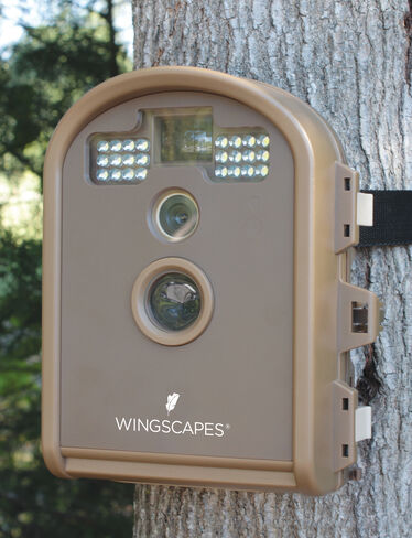 Outdoor Wildlife Camera
