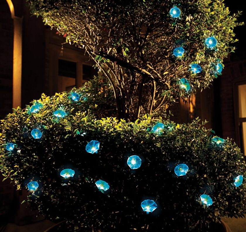 Solar String Lights Morning Glory Lights Gardener S Supply