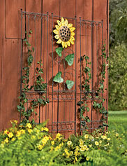 Garden Wall Trellis