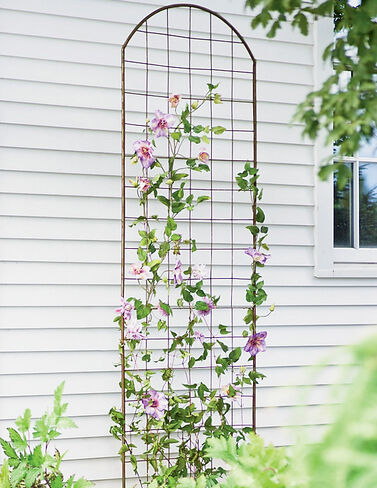 Jardin Flower Trellis plant supports, garden trellis, garden supplies, organic garden supplies, vegetable garden supplies