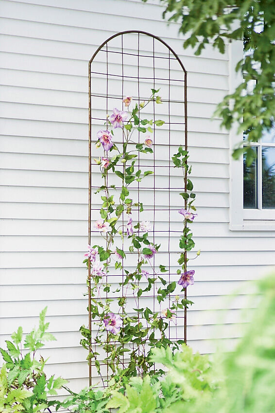 Great Jardin Flower Trellis Plant Supports, Garden Trellis, Garden Supplies,  Organic Garden Supplies,