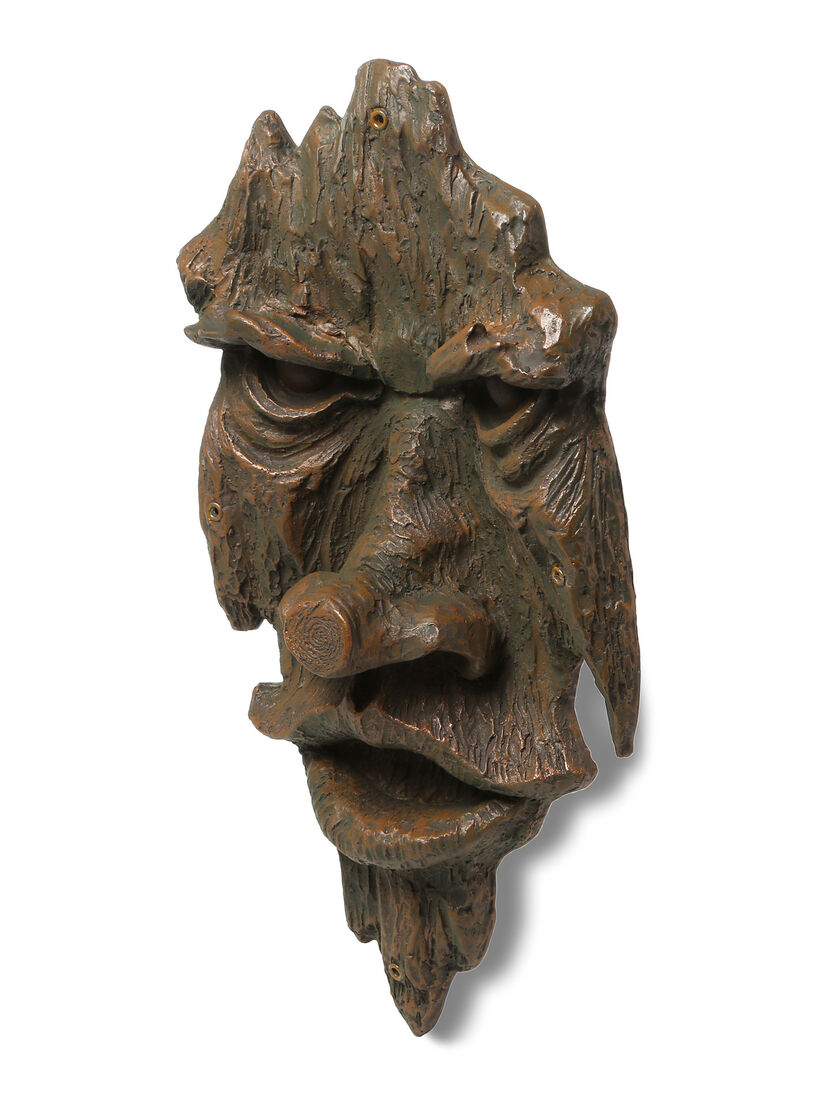 Tree Faces Friendly Ent Tree Face Gardener S Supply