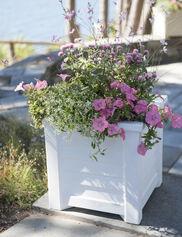 Lakeland Self-Watering Square Planter, 16""