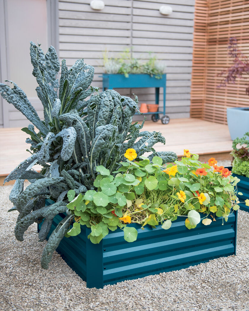 Metal Garden Beds Corrugated Metal Garden Beds