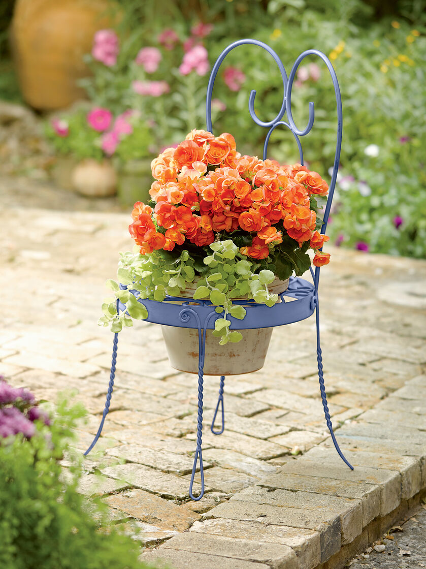Chair Pot Holder Chair Shaped Holder For Potted Flowers
