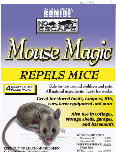 Indoor Mouse Magic