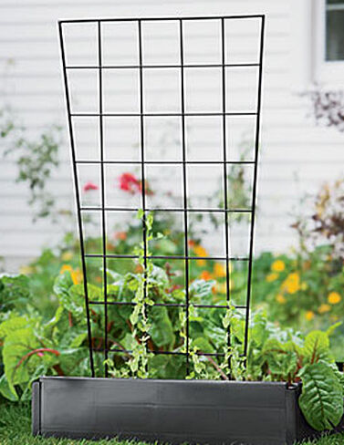 Vegetable Trellis, 56 plant supports, garden trellis, garden supplies, organic garden supplies, vegetable garden supplies