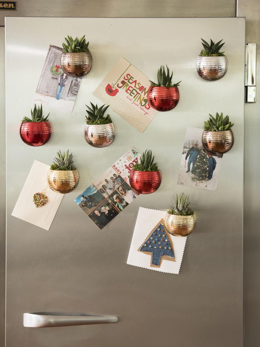 Indoor Succulent Garden Mini Magnet Holiday Succulent Garden
