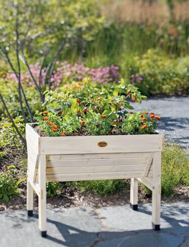 Compact VegTrug™ Patio Garden, Whitewash