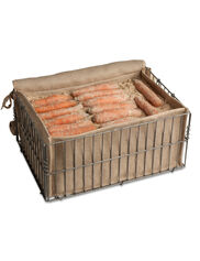 Root Storage Bin