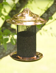 Copper Thistle Bird Feeder