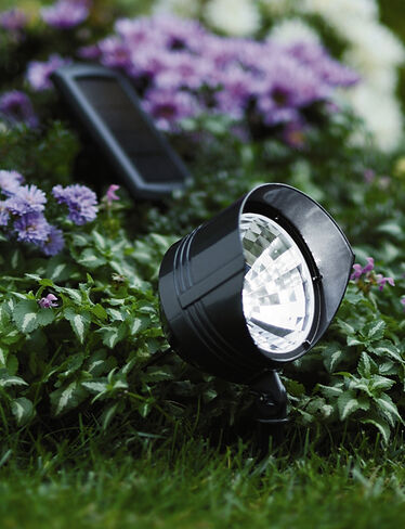Solar Area Light Buy The Solar Area Light Gardener S Supply