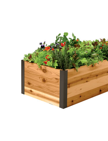 Deep Root Cedar Raised Beds, 2' Wide