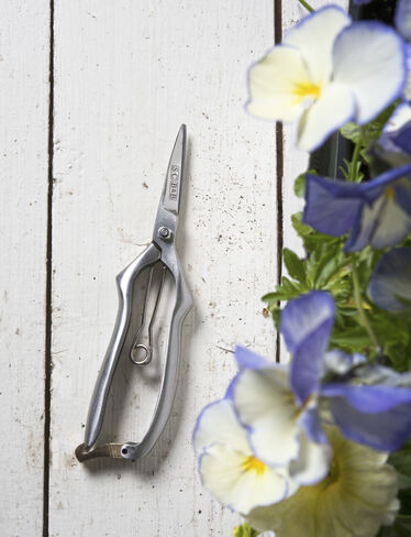 Stainless Precision Pruning Snips