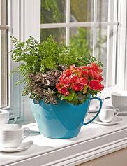 Viva Self-Watering Tea Cup Planter