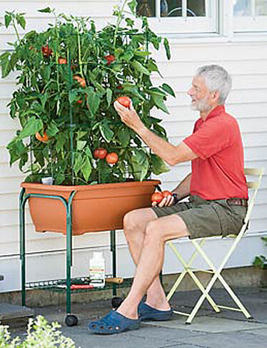 Tomato Success Trolley