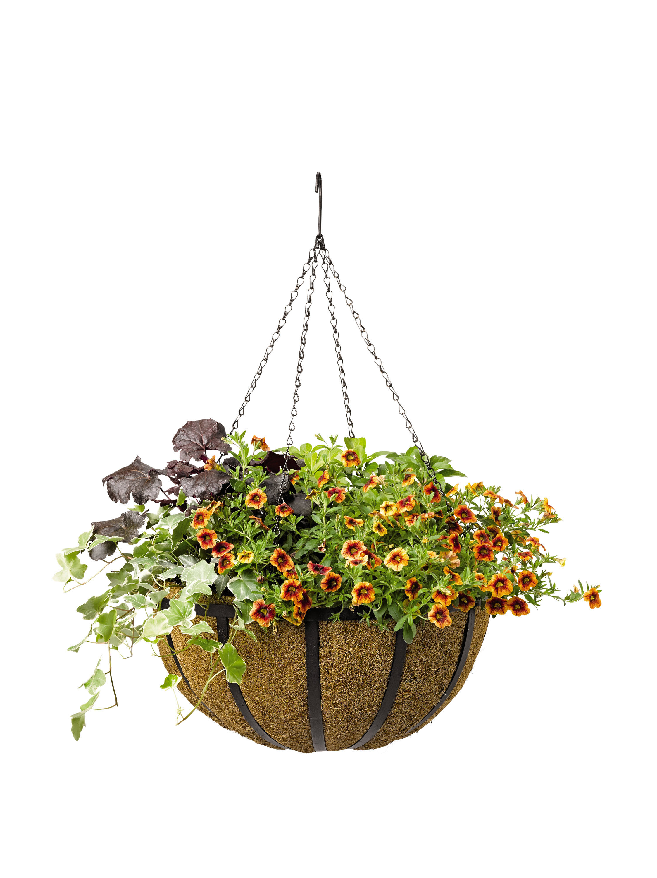 Flowers For Baskets For Hanging : Hanging baskets for plants and flowers self watering