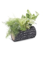 Surreal™ Woodland Oak Horizontal Planter, 11""