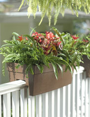 Self-Watering Railing Planter