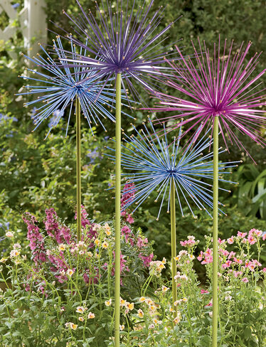 Everlasting Alliums, Set of 2