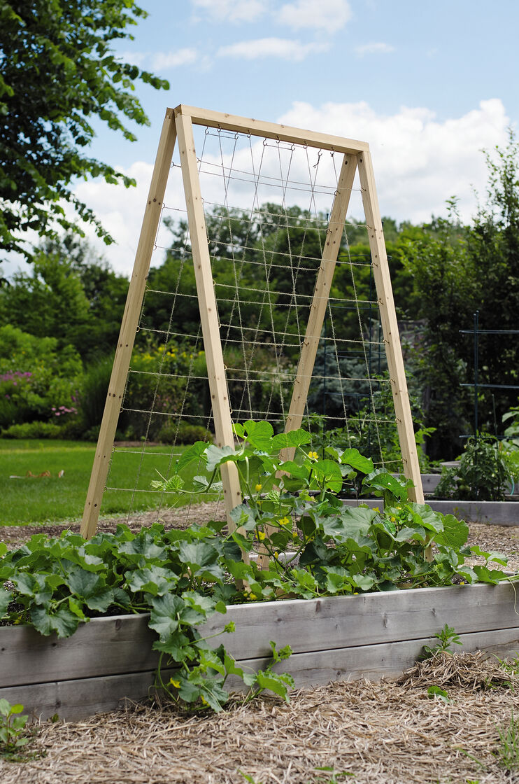 twine vegetable trellis