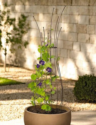 Jardin Pot Trellis