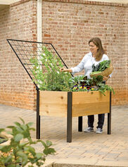 Elevated Cedar Planter Box and Space-Maker Pivoting Trellis Set, 2' x 4'