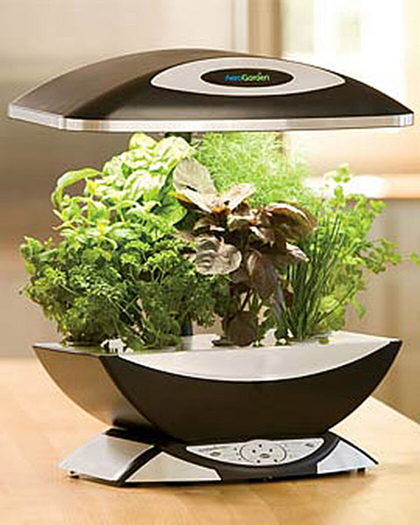 Aerogarden Pro buy from Gardeners Supply